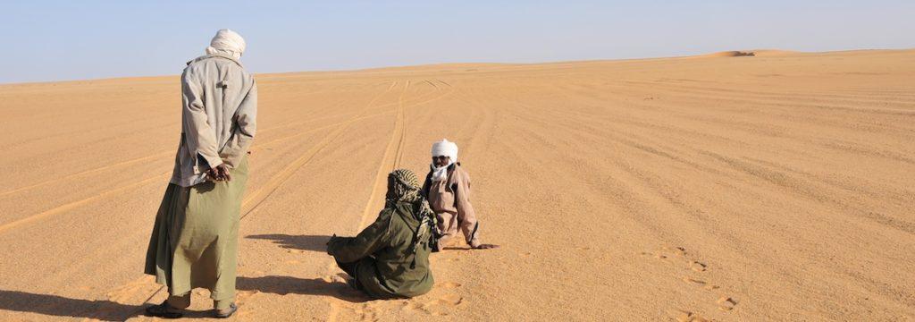 Erg du Djourab Tchad